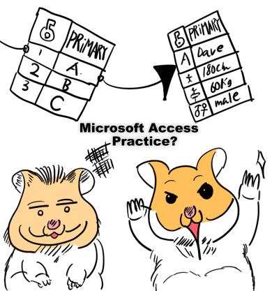 Microsoft Access practice?